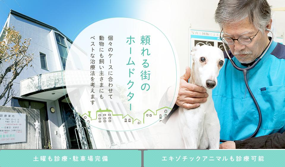 頼れる街のホームドクター 個々のケースに合わせて動物にも飼い主さまにもベストな治療法を考えます 土曜も診療・駐車場完備 エキゾチックアニマルも診療可能
